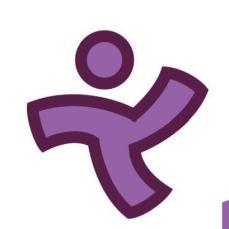 logo - miracle feet