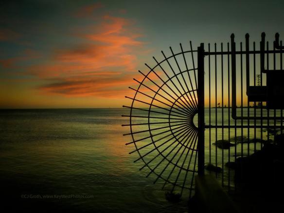 image credit: CJ Groth, Florida 2012