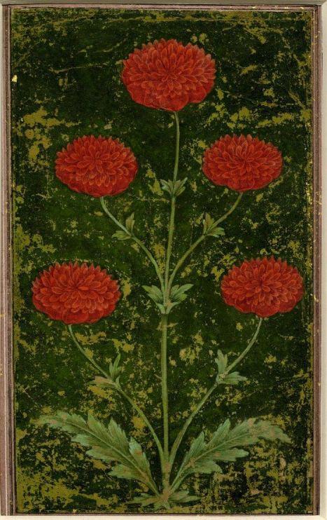 artist unknown: Mughal India, circa 1651-1750