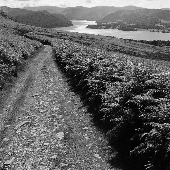 poetry-the-path-to-ullswater-photo-david-whyte-cumbria-july-10-2010
